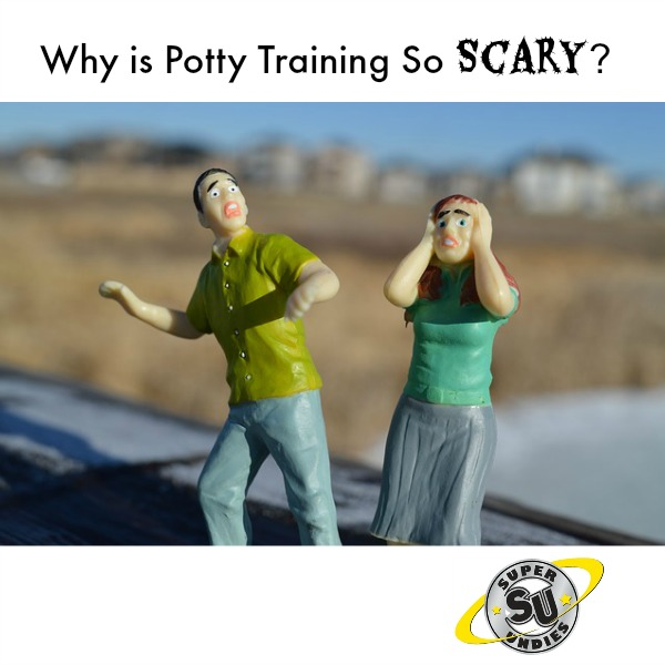 Why is potty training so difficult zip